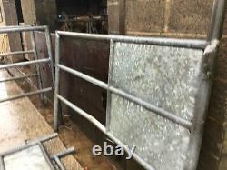 Cattle AI Stalls / Livestock Race Pens VAT INCLUDED Galvanised Heavy Duty